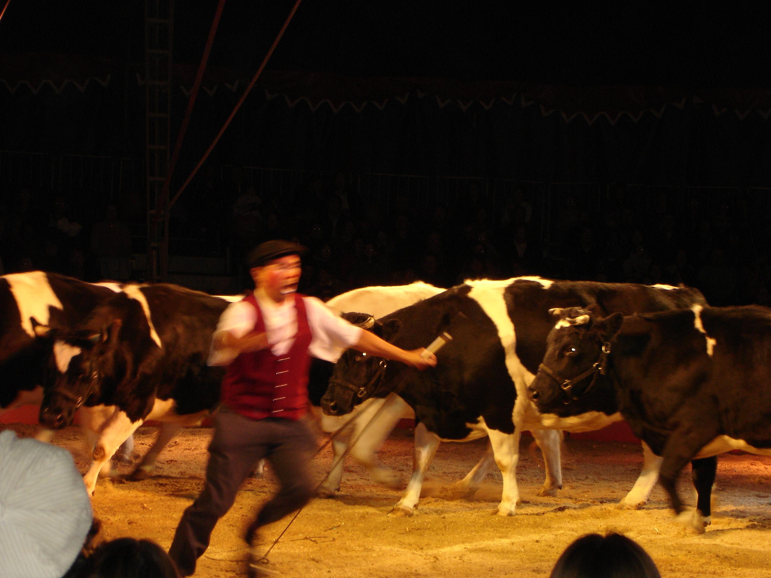 Cirque Colcombet
