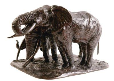 Éléphantes d'Afrique s'abreuvant - Vue 01