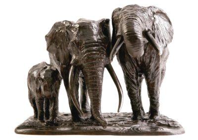 Éléphantes d'Afrique s'abreuvant - Vue 02
