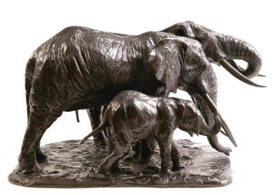 Éléphantes d'Afrique s'abreuvant - Vue 04
