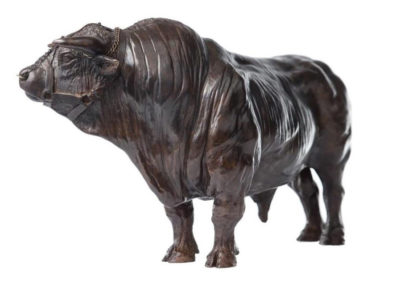 Coquet, grand taureau charolais (patine brune ou crème)