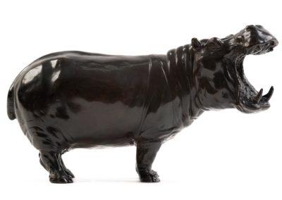 Hippopotame gueule ouverte - Vue 02