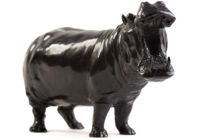 Hippopotame gueule ouverte - Vue 03