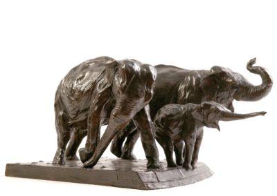 Éléphantes d'Asie au zoo - Vue 02