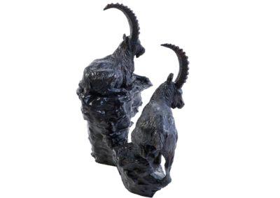 Bouquetins sur le rocher - Vue 03