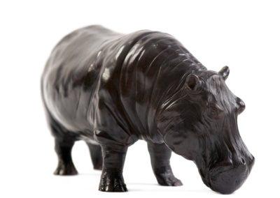 Grand mâle hippopotame