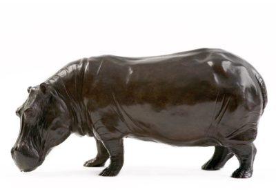 Grand mâle hippopotame - Vue 01