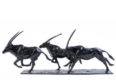 Le galop des oryx - Vue 01