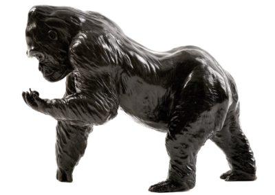Le gorille et la pomme - Vue 01