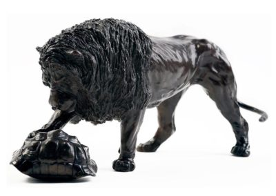 Le lion et la tortue léopard