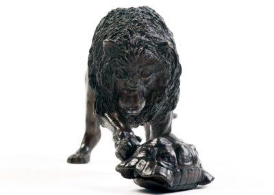 Le lion et la tortue - Vue 02