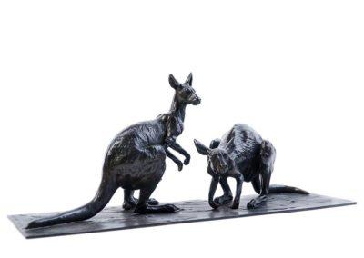 Les deux kangourous roux