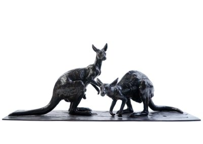Les kangourous roux - Vue 01