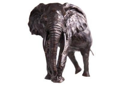 7ème éléphant - Vue 01