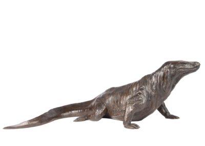 Dragon de Komodo - Vue 01