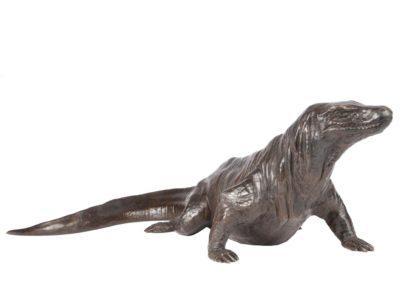 Dragon de Komodo - Vue 02