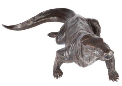 Dragon de Komodo - Vue 03