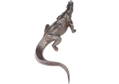 Dragon de Komodo - Vue 04