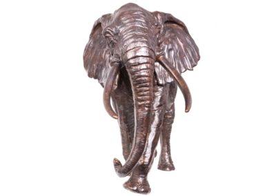 Eléphant de tete - Vue 02