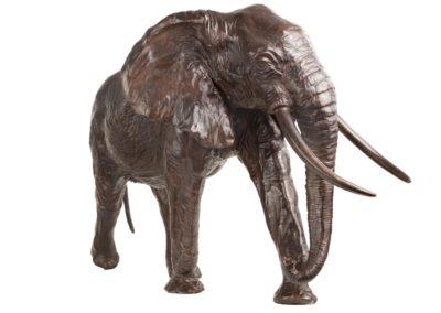 Eléphant de tete - Vue 03