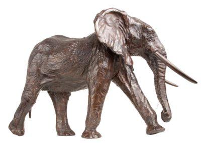 Eléphant de tete - Vue 04