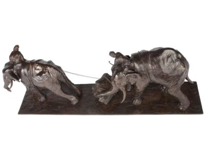 Eléphants d'Asie - Vue 01
