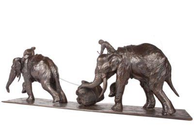 Eléphants d'Asie - Vue 02