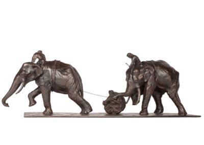 Eléphants d'Asie - Vue 03
