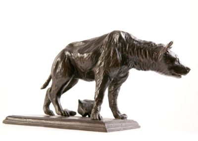 Hyène - Vue 02