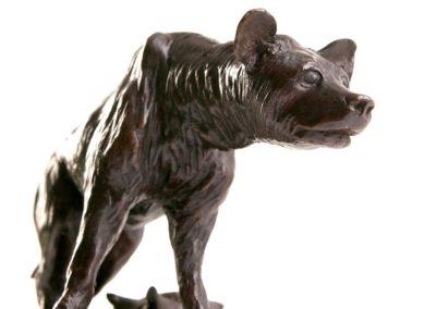Hyène - Vue 03