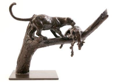 Le léopard et sa proie dans l'arbre