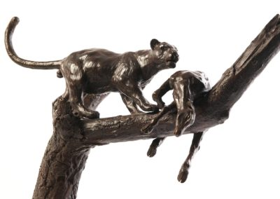 Le léopard et sa proie dans l'arbre - Vue 04