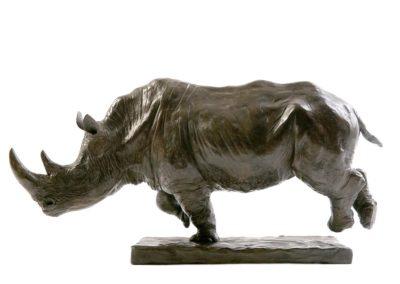 Rhinocéros blanc chargeant (ÉPUISÉ)