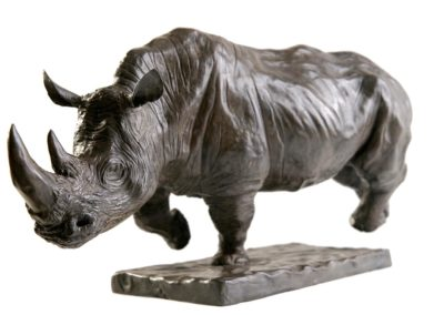 Rhinocéros blanc chargeant - Vue 02