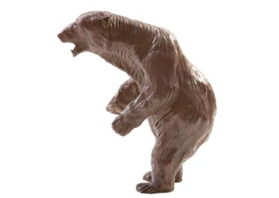 Alaska – Ours blanc debout