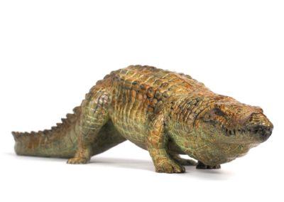 Crocodile du Nil en marche - Vue 03
