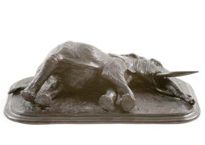 L'éléphant d'Afrique couché - Vue 02
