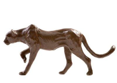 Le guépard - Vue 01