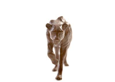 Le guépard - Vue 02