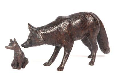 Le renard et le renardeau - Vue 01