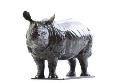 Rhinocéros indien - Vue 02