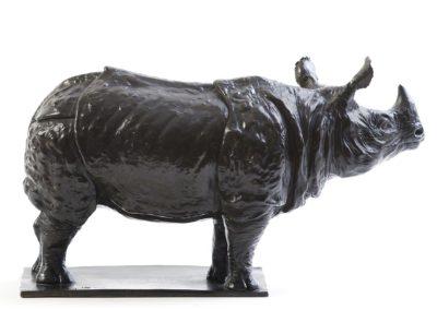 Rhinocéros indien - Vue 03