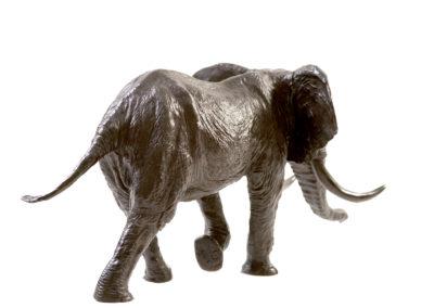 Eléphant-d'Afrique-chargeant-vue-03