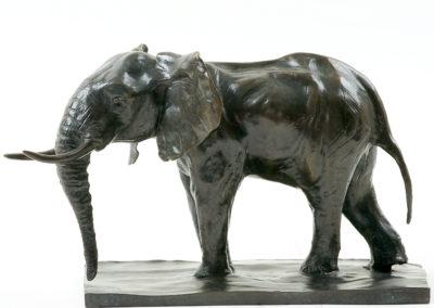 Éléphant d'Afrique en alerte (ÉPUISÉ)
