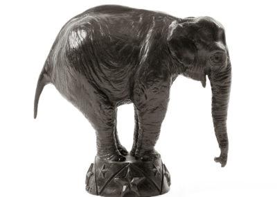 Eléphant-d'Asie-au-cirque-vue-01