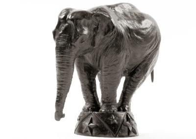 Eléphant-d'Asie-au-cirque-vue-02