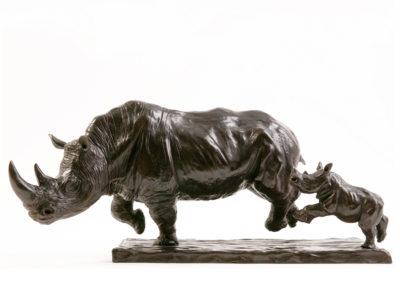 Rhinocéros blanc chargeant et son petit