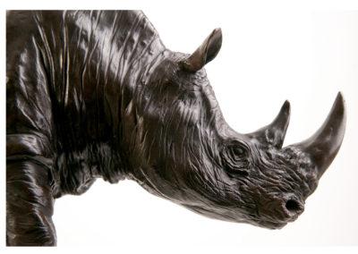Rhino-et-petit-vue-03
