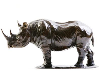 Rhinocéros noir d'Afrique (ÉPUISÉ)