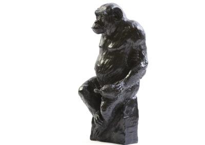 Le chimpanzé Socrate et sa tortue (ÉPUISÉ)